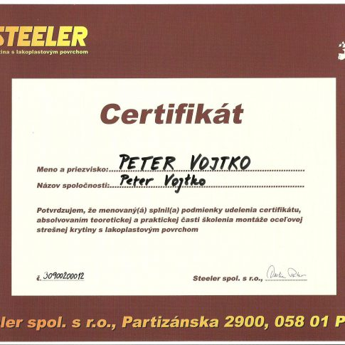 steeler 001